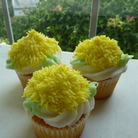 Shaggy Mum Cupcakes Wilton 2D, 352, and 233 tips with buttercream icing on white cupcakes. http://gabbyrm.blogspot.com/