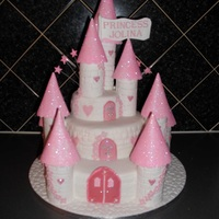Princess Castle My 1st attempt at a castle cake, I was really pleased with the outcome as was the little girl and her family that I made it for.