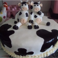 Cow Birthday Cake white mud cake with fondant hand made cows.. made by Tracey
