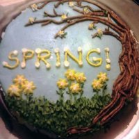 Spring! So this was actually the bottom tier of another cake that i salvaged and re-frosted a light blue due to some failed blue flowers that has...
