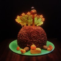 Turkey   A little late getting this picture posted! Butter cake with fudge buttercream and fondant accessories.