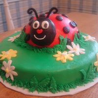 Ladybug Cake All buttercream with pipe cleaner antennae
