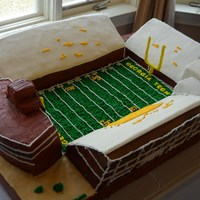 Bobby Dodd Stadium Cake I do not remember exactly how many cakes i made for this cake - but it was all Double Chocolate Fudge with double chocolate fudge...
