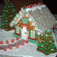 First Attempt At A Gingerbread House   Gingerbread House and trees