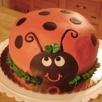 "Shaped Lady Bug made this cake w/ an 8"" round and a bowl. the red is buttercream and black accents are fondant"