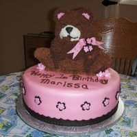 Teddy Bear Cake Teddy Bear Birthday Cake was a big hit.
