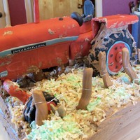 A Muddy Mess This is a birthday cake I did for a friend. It is half german chocolate and half devil's food. The tractor is RKT covered in MMF....