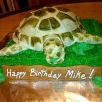 Russian Tortoise Cake Tortise is cake covered in fondant that was scored and then hand painted with diluted food coloring. TYFL!
