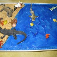 Ocean Cake  I made this OCEAN cake for my son's 7th birthday. I covered it with blue buttercream and then put a thin layer of blue piping gel over...