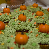 Pumpkin Patch Cupcakes  I donated 2 dozen home made cupcakes to an auction to benefit a children's center Last Oct. 2009. The winner of the cupcakes cashed in...