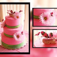 Butterfly Baby Shower Cake  This is my first tiered cake. Chocolate with blackberry filling iced in home made BC icing. The colors were chosen by the girl throwing the...