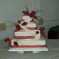 Square Wedding square 4 tier all edible except bear grass and ribbon