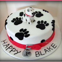 Doggy 1St Doggy theme cake. This is a 9 inch chocolate and white chocolate marble cake with chocolate ganache filling. Iced and decorated in fondant...