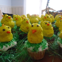 Easter Chicks chicks sitting in cupcakes with tinted coconut -chicks made from leftover cakes-made into balls , dipped in chocolate-covered with...