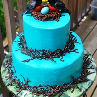Bird Biologist Baby Shower Cake for a lady who (and her husband) are bird biologist. So, naturally, I went with a robin theme. White cake with lemon curd (top tier)...