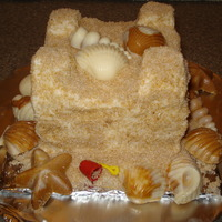 Sand Castle Smash Cake Sand Castle Smash Cake I made for a 1 yr. old to coordinate w/his beach cake. Used sifted brown sugar for sand and molded candy melts for...
