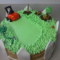 Bday Cake For Landscaper  Buttercream frosted with fondant pieces. I saw a couple of cakes similar to this before and thought it was a cute idea,i love the hose and...