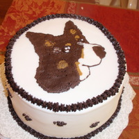 Border Collie Fbct friend wanted a birthday cake for her friend, called me at 10am saying the party was at 1, could I have it done? was planning on the cake...