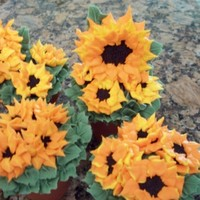Sunflower Cupcakes made these for my wives birthday as she loves sunflowersfrench vanilla with whipped cream filling, silicon cupcake flower pots,oreos for...