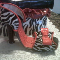 Zebra Shoe And Shoe Box