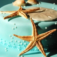 Under The Sea Gum paste seascape shapes on airbrushed acqua blue fondant!