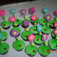 Summer Flower And Lady Bug Cupcakes