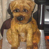 Border Terrier Dog Cake  All edible, body and hind legs are sponge cake and the front legs and head are marshmallow crispie cake. All covered in royal icing and...