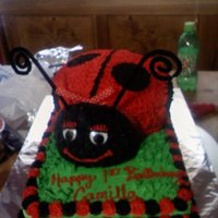 Camilla LADY BUG CAKE! CAKES BY THE CAKE PRINCESS. MICHELLE PRINCE