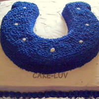 Indianapolis Colts I made this for my nephew's birthday. He is a huge Colts fan!!