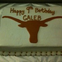 University Of Texas Birthday Cake I did this cake for a friend's son. Everything is buttercream icing except the longhornm which is mm fondant.