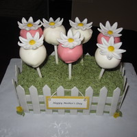 Cake Pop Garden I made this for my mother in law. Grass is buttercream, flowers and picket fence are fondant/gumpaste.