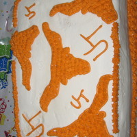 Texas Longhorns Cake I'm just a total beginner who wanted to show her 'horn love!