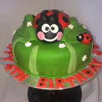 Ladybird Cake   Based on a cake by fantasticakes, ladybird cake. Ladybird is sugarpaste.