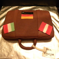 Traveling To Europe Suitcase cake for my parents to take to their meeting where they would be discussing the trip to Germany, Austria and Italy next month....