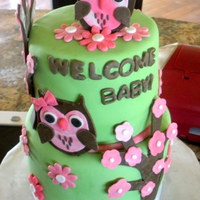 Owl Baby Shower Cake First time using my cricut machine. The theme for this shower was pink tie dye and lime green.