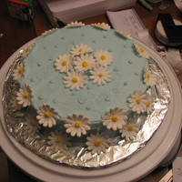 Blue Daisy Cake   This was a cake for my mom's birthday. It's covered in light blue buttercream and the daisys are made out of royal icing
