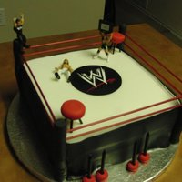Wrestling Cake Celebration cake made for Michael Cole and Josh Matthews of the WWE. :) Made with fondant.