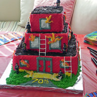 "The Roof Is On Fire  This is a cake for a 70th birthday, the theme was ""The roof is on fire"" This is a buttercream cake with fondant walls, RI ladders..."