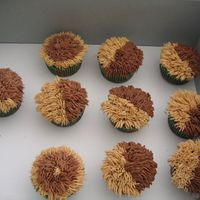 Cupcakes To Go With Tarantula Cake