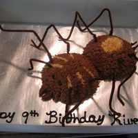 Tarantula Birthday cake for a coworkers son
