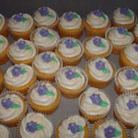 Cupakes All butter-buttercream icing and decorations. I used tip 1M for the swirl.