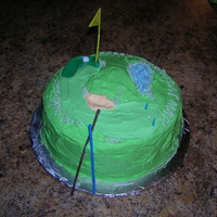 Golfer's Cake An 8 inch cake decorated to resemble a small golf course. This was for a friends birthday.