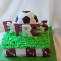 Express Soccer Party I got the idea from a few cakes here on cake central - thanks so much! Everyone at the party loved it - the girls all wanted the piece with...