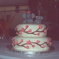 Middle School Graduation, June 2009 2-tier chocolate cake, frosted in BC, covered in MMF. The cake is decorated in cherry blossom branches and gumpaste cherry blossoms. The...