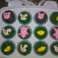 Farm Animal Cupcakes These cupcakes went along with a farm themed 91st birthday cake. They are decorated with buttercream, tfl!