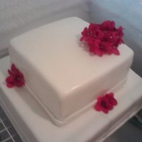 White And Rasberry Wedding Cake My first wedding cake and my first square cake! Not too bad and the bride loved it! :)
