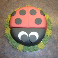 Ladybug Cake   I made this cake after my boyfriends mother bought me a book with the design in it.