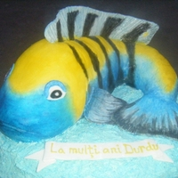 Fish Cake This is an cynotilapia_afra_fish! I made this cake for a friend who like very much fishes