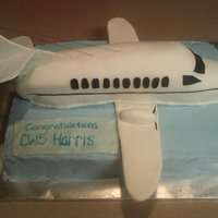 Promotion Party C26 airplane, white and chocolate sheet cake with white airplane