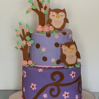 My Daughter's First Birthday Bella's Birthday was Owl themed so I chose a cake originally done by shannonlovebug on Cake Central but with my little changes. I had...